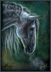 Grey Horse by KateVigdis