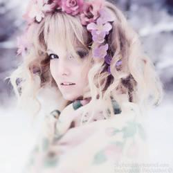 winter dream by sl-photographer