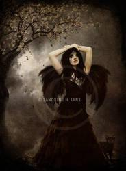 - The Dark Angel - by SandyLynx