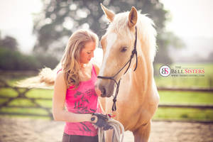 Palomino Horse by thesashabell