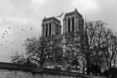 Notre Dame II by siyabonga