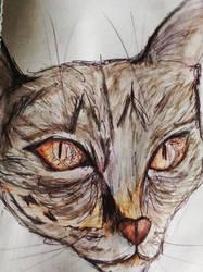 Creepy Cat by HelenaCollins