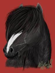 My Baby horse by skeptikern