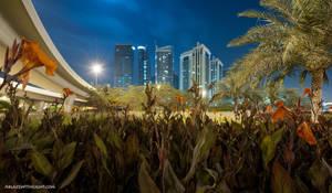 Urban Jungle by VerticalDubai