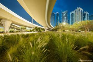 Urban Jungle II by VerticalDubai
