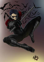 New 52 Nightwing by TaMzS