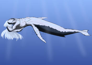 Humpback Mer Whale by Seleuf
