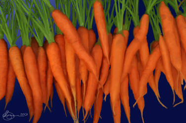 Carrots by xxchef