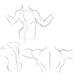 Back Anatomy quicksketch by Colour-of-Dreams
