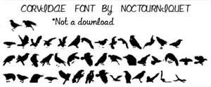 Corvidae Font by Noctourniquet