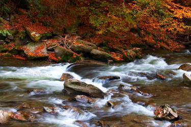 Autumn River by waterchild23