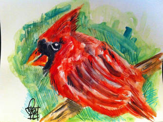 Cardinal Rule by MazAdamsArt