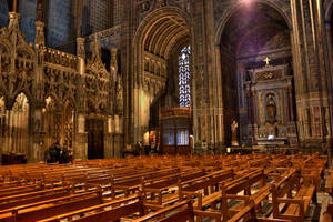 Cathedrale Sainte Cecile 2 by stntoulouse
