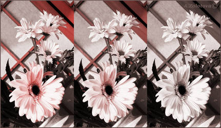 Flowers with pearl petals. Collage by AnnaZLove