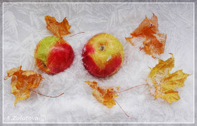 Apples in the snow 2 by AnnaZLove