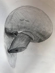 Mushroom Drawing  by Wolfsongamp