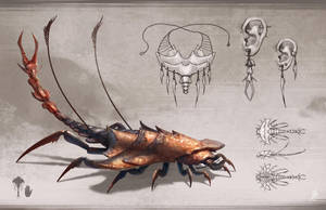 Invertebrate Design by Zhrayde