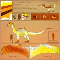 Sunburst Reference Sheet by vtforpedro