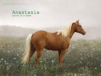 Anastasia by Horsetails