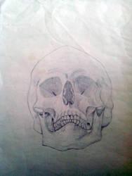 Skull by Player-Designer