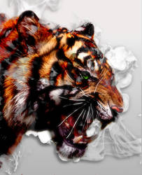 Tiger Spirit by Frostbitten-Angel