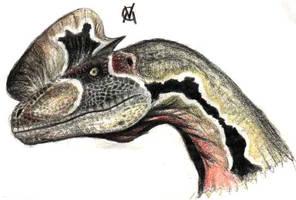 JP dilophosaur by VyToR