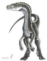 Sturmblut raptor by VyToR