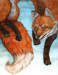 Jumping Fox by JezebelTart
