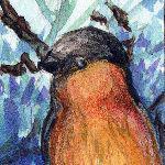 Inchie #5 Bullfinch by Colutea