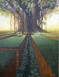 Lily Pond by graemeb
