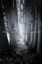 Erddig Trees by Deepsies