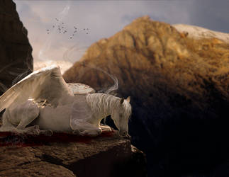 birth of pegasus. by photoFLOSS
