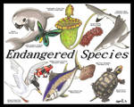 Endangered Species Day 2014 by Ama-Encyclopika