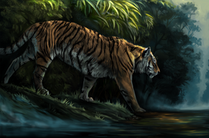 Bengal Tiger by kaijae