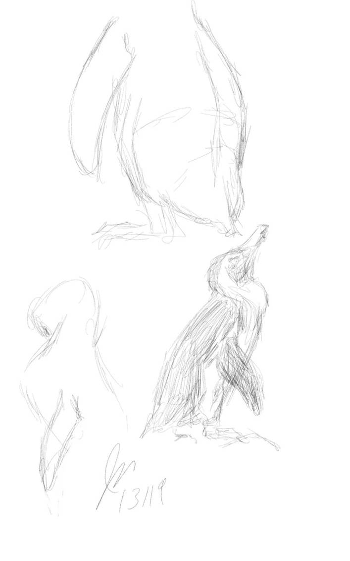 Penguin Studies by elipse