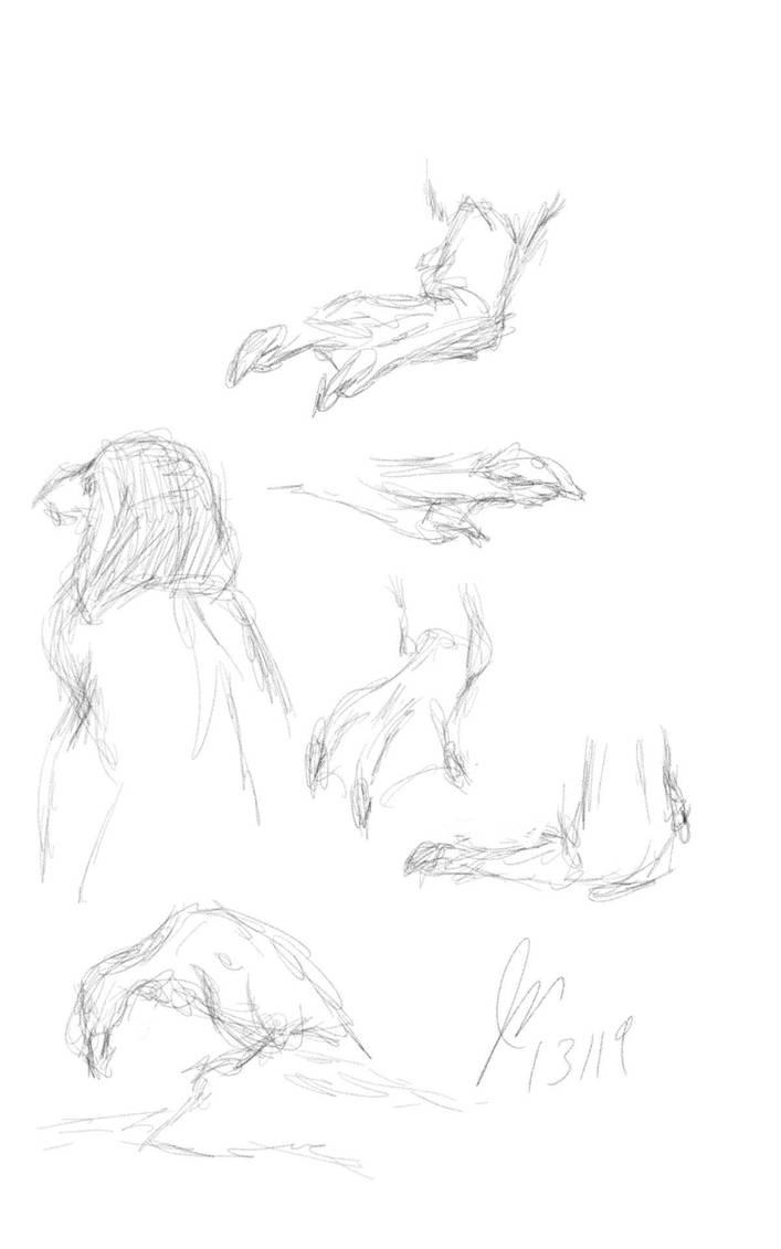 Penguin Studies 2 by elipse