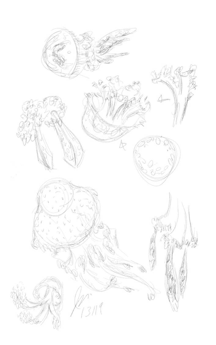 More Jellyfish Studies by elipse