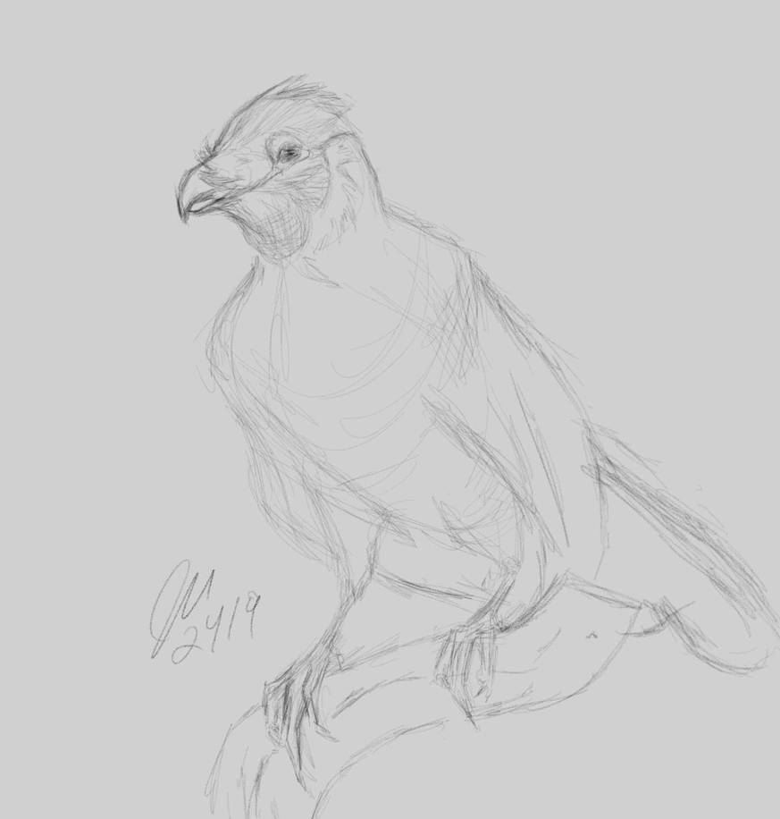 Another Museum Bird by elipse
