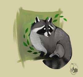 raccoon by FairyOpossum