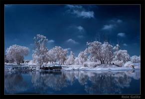 Lake shore by RoieG