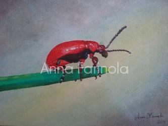Bug by Sheflonmened