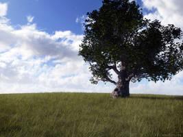 Lone Oak 2008 by moodflow