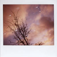 Frozen Sunset by futurowoman