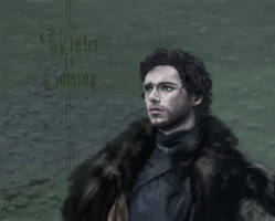Robb Stark from Game of Thrones by chons-moon