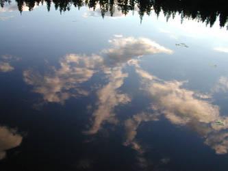 Mirror of Nature by zironjones