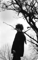 Reno: Blackbird by Inspiral