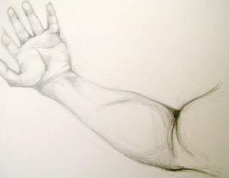 Hand Study II by drewisgenki