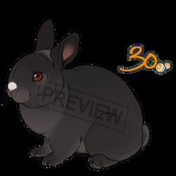 Pay2Use Fluffy Bunny Base 30pts by konikfryzyjski