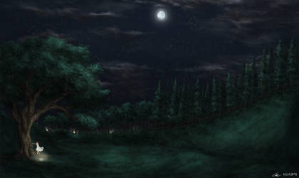 Night field by leazin10