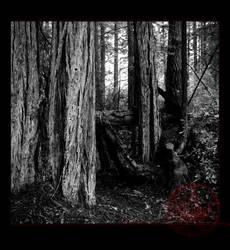 ThresholdTwo by darkviolet